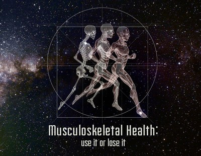 Musculoskeletal Health - Header